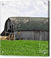 Old Barn And Round Bales Acrylic Print