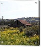 Old Barn In Sonoma California 5d22234 Acrylic Print