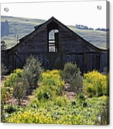 Old Barn In Sonoma California 5d22236 Acrylic Print