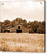Old Barn Staying Silent  Acrylic Print by Jinx Farmer