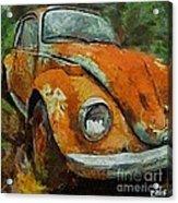 Old Beetle Acrylic Print