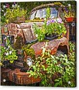 Old Truck Betsy Acrylic Print