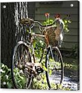 Old Bicycle And Hat Acrylic Print