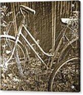 Old Bikes Acrylic Print
