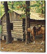 Log Cabin - Back View - At Big Creek Acrylic Print