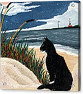 Old Cat And The Sea Acrylic Print