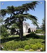 Old Cedar At Chateau Amboise Acrylic Print