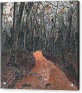 Old Connecticut Path Acrylic Print