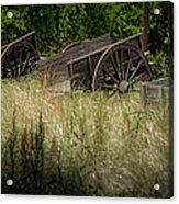 Old Cotton Bale Wagons Acrylic Print by Allen Biedrzycki