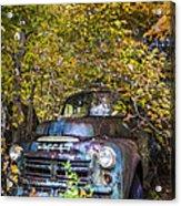Old Dodge Acrylic Print by Debra and Dave Vanderlaan