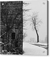 Old Door And Tree Acrylic Print by William Jobes