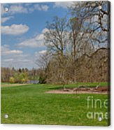 Old Elm Haverford College Acrylic Print by Kay Pickens