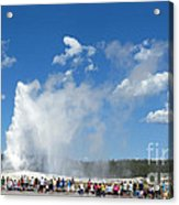 Old Faithful. With Thanks To Lee Acrylic Print