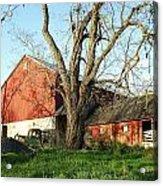 Old Farm Acrylic Print