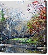 Old Florida Along The Sante Fe River Acrylic Print