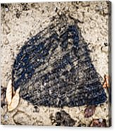 Old Forgotten Wool Cap Lying On The Ground Acrylic Print