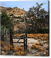Old Gate At Oak Flats Acrylic Print
