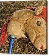 Old Hobby Horse Head Acrylic Print