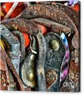Old Horse Shoes Acrylic Print