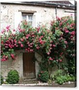 Old House Covered With Roses Acrylic Print