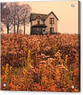 Old House In Weeds Acrylic Print
