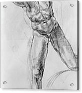 Old Masters Study Nude Man By Annibale Carracci Acrylic Print