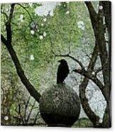 Old Moss Acrylic Print
