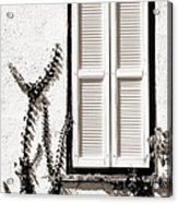 Old Painted Shutter 2 Acrylic Print