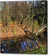 Old Park Canal In Autumn Acrylic Print