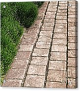 Old Pavers Alley Acrylic Print by Olivier Le Queinec