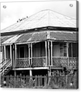 Old Queenslander Acrylic Print by Lee Stickels