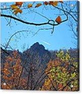 Old Rag Hiking Trail - 121212 Acrylic Print