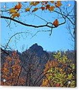 Old Rag Hiking Trail - 121213 Acrylic Print