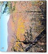 Old Rag Hiking Trail - 121215 Acrylic Print