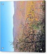 Old Rag Hiking Trail - 121223 Acrylic Print
