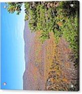 Old Rag Hiking Trail - 121224 Acrylic Print