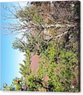 Old Rag Hiking Trail - 121226 Acrylic Print