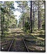Old Railroad Tracks Acrylic Print