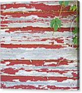 Old Red Barn With Peeling Paint And Vines Acrylic Print