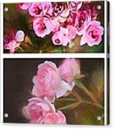 Old Roses Vertical Acrylic Print