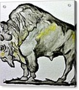 Old School Buffalo Acrylic Print