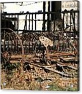 Old Sharecropper Acrylic Print
