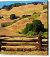 Old Split Rail Fence Acrylic Print by Michael Pickett