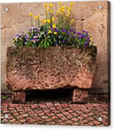 Old Stone Trough And Flowers In Alsace France Acrylic Print by Greg Matchick