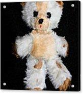 Old Teddy Bear Pepi Acrylic Print