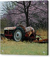 Old Tractor And Redbuds Acrylic Print