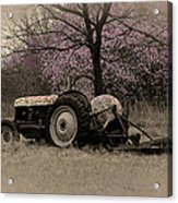 Old Tractor And Redbuds Sepia Acrylic Print