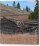Old Turn Of The Century Log Cabin Homestead Art Prints Acrylic Print