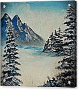 Old Winter Acrylic Print