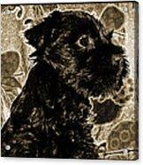 Olde World Canine Acrylic Print